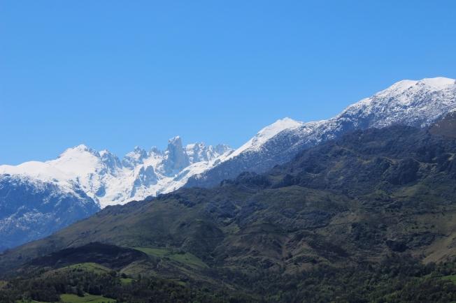 Los Picos 2013